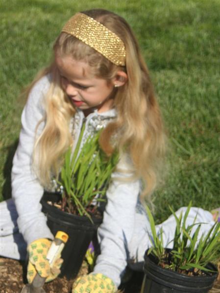 Seven Locks student gently installs new native plant.