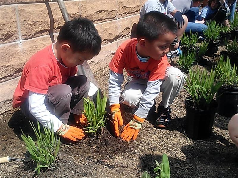 Seven Locks student gardeners disiplaying perfect teamwork!