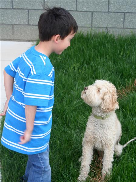 Young volunteer makes friends with Ziggy, the Master Gardener's dog.